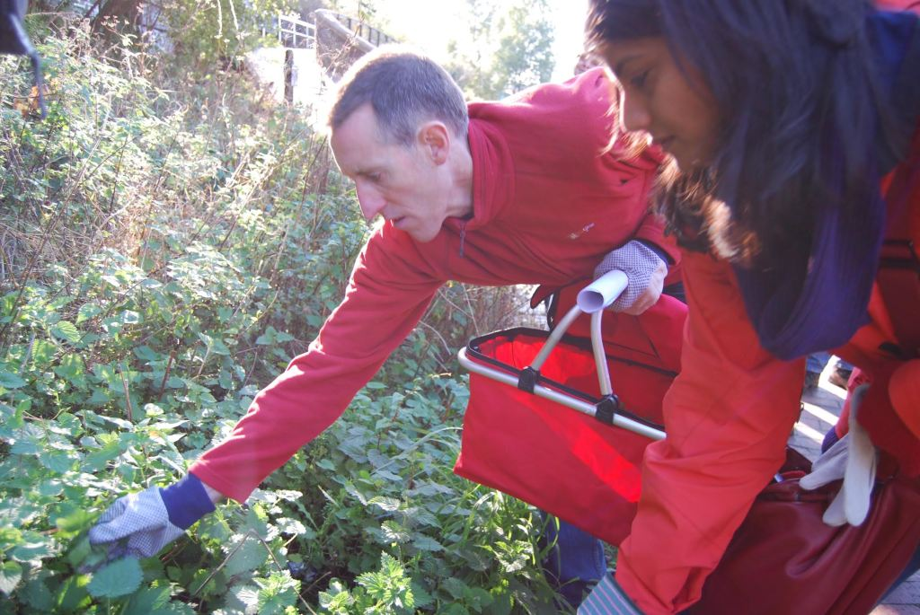 foraging-edible-eastside